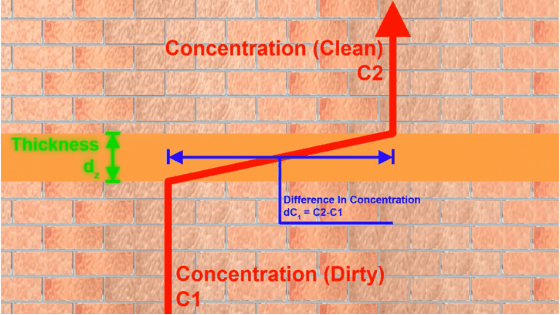 Factors affecting membrane thickness
